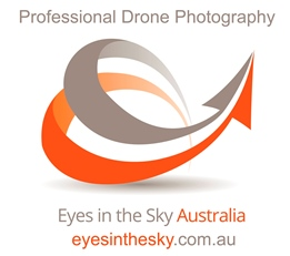 Eyes In The Sky Logo redrawn